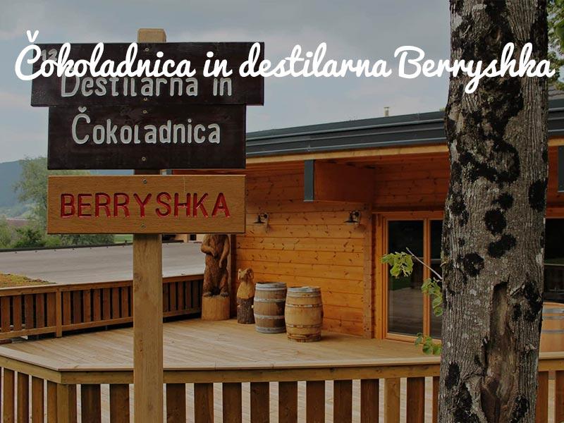 panntour-berryshka