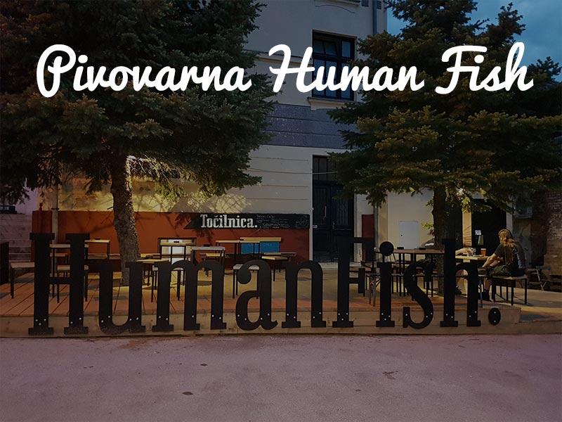 panntour-pivovarna-human-fish