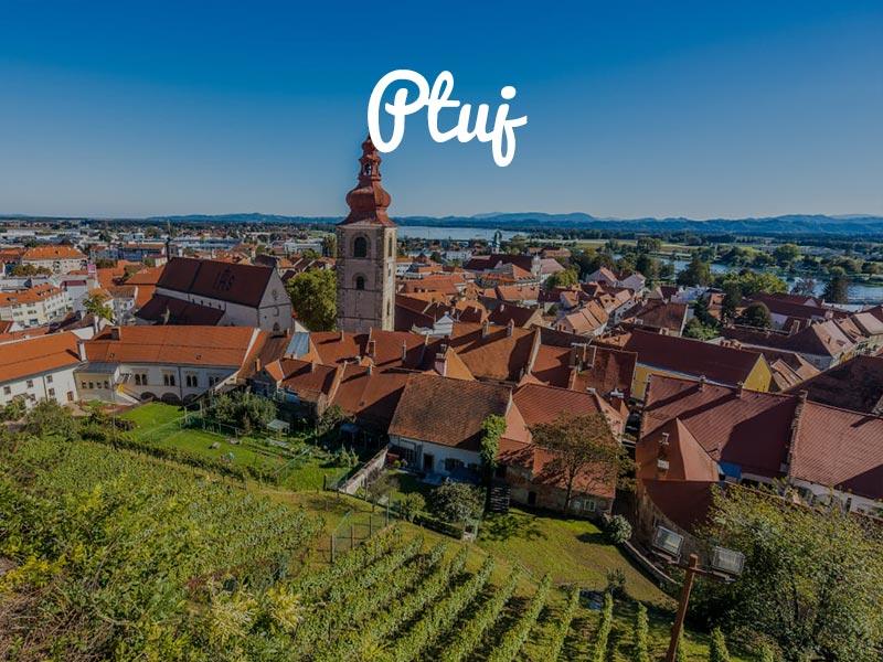 panntour-ptuj-2