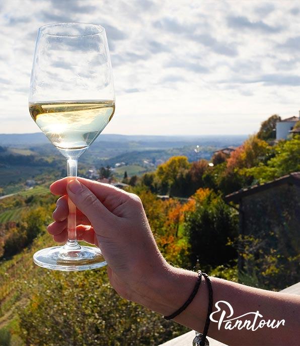 vinsko-kulinaricni-izlet-po-dezeli-stajerski-03