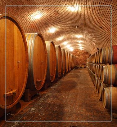 vinsko-kulinaricni-izlet-po-dezeli-stajerski